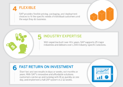 SAP-Top-10_infographic