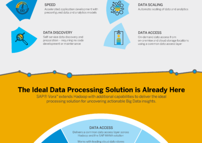 SAP_Vora_big-data_infographic