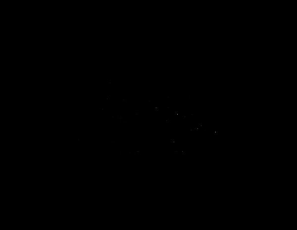 Junction Accessories