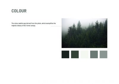 CABIN - brand design - colour